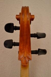 CelloKopf hinten